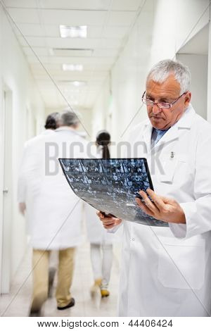 Senior male radiologist reviewing x-ray with colleagues walking in background