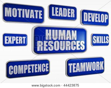 Human Resources - Blue Business Concept