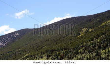 Mountain View In Colorado