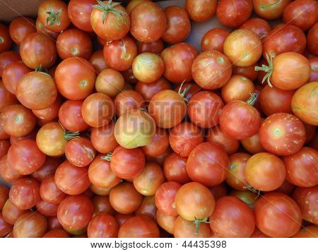 Tomatoes Of Red Wtih Spots Of Orange, And Green Color