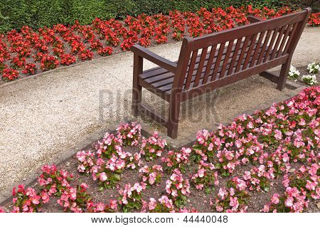 Flowers Around A Bench