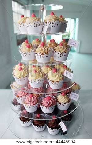 Elegant Cupcakes Exposed In A Confectionery