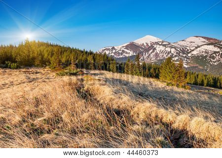 Beautiful sunny day is in mountain landscape. Carpathian, Ukraine. Europe