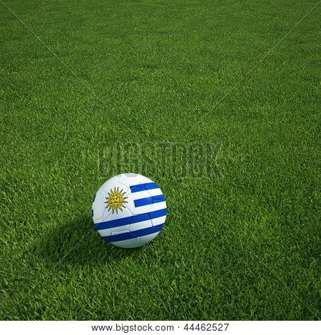 3D-Rendering ein uruguayischer Soccerball lying on grass