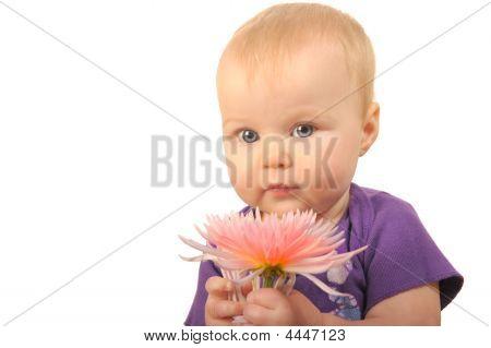 Bebê com flor