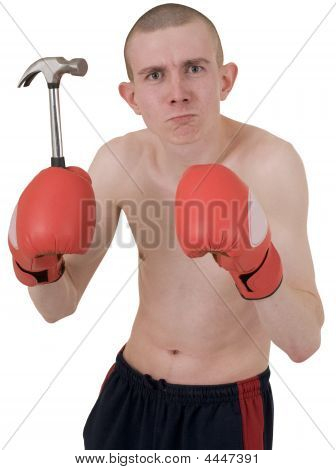 Boxer And Hammer