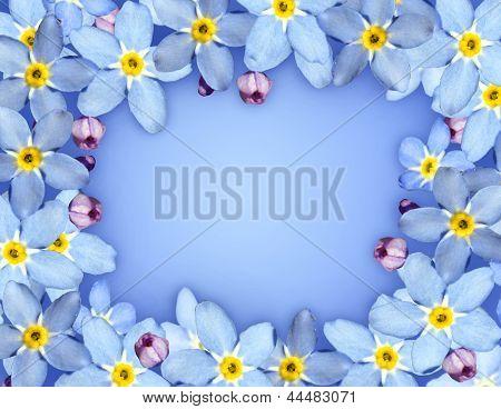 Blue Flower Frame