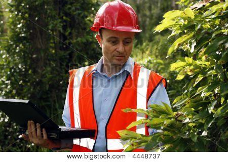 Leaf Investigation