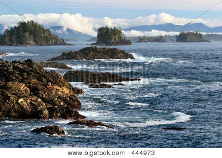 Orilla de la isla de Vancouver 2