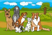 Cute Purebred Dogs Group Cartoon Illustration poster