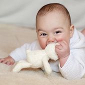 picture of teething baby  - Portrait of a cute baby boy or girl lying on her back looking up playing with a soft toy rabbit - JPG