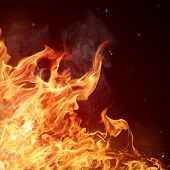 stock photo of bonfire  - Fire flames background - JPG