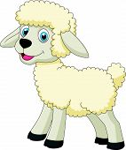 picture of counting sheep  - Vector illustration of Cute sheep cartoon isolated on white background - JPG