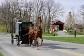 image of covered bridge  - An Amish horse and carriage travels on a rural road in Lancaster County - JPG