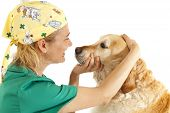 picture of auscultation  - Veterinary consultation and a follow a dog - JPG