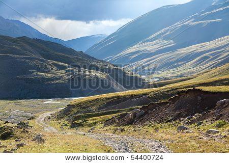 Majestic dirt road in Kirgizia