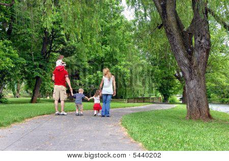 Along a quiet path