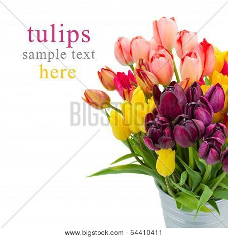 Bunch of tulips flowers  close up