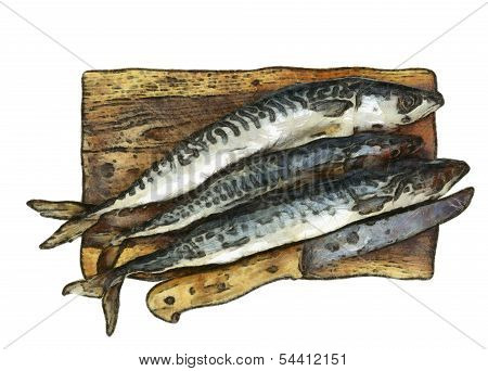 Fresh Mackerel On Chopping Board