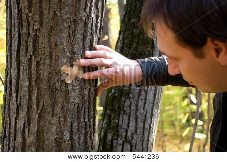 man's hand putting plasters on the tree
