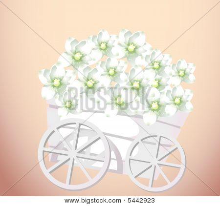 Pushcart And Flower