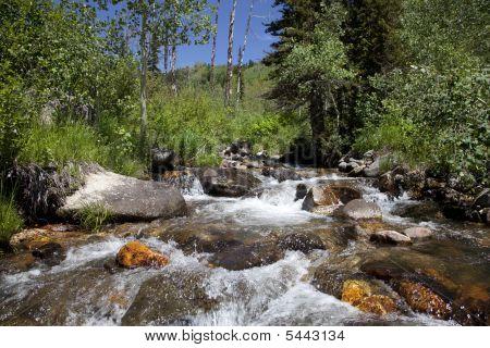 Mounrain  River