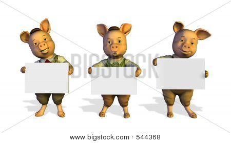 Tres cerditos sosteniendo carteles