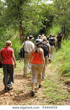 Tourists On African Walking Tour
