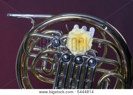 French Horn With Yellow Rose On Red