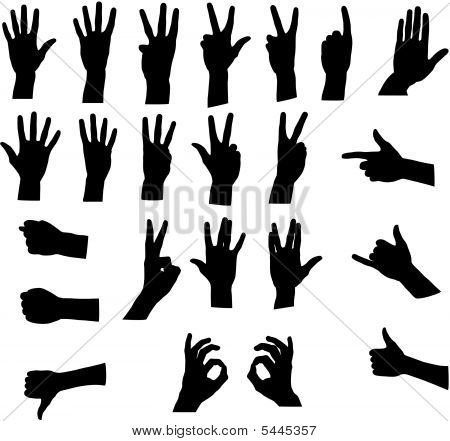 Assorted Hand Signals Vector
