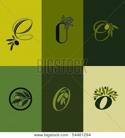 Olive tree branch. Set of labels. Vector illustration