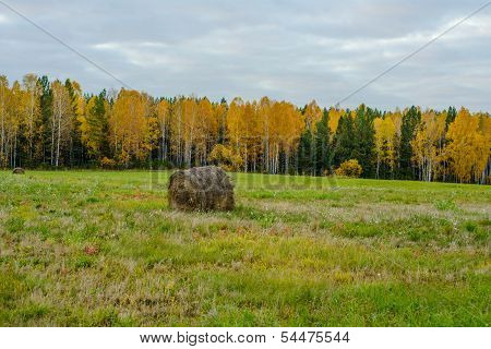 Haystack In Country Field