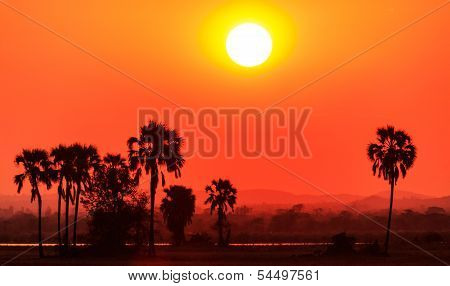 Orange Glow Sunset In A African Landscape