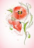 Vertical Background with Red Poppy
