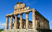 stock photo of ceres  - roman temple of Ceres at Paestum Italy - JPG