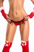 foto of voluptuous  - Slim alluring  female body posing in sexy santa lingerie - JPG