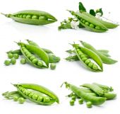 image of green pea  - set of fresh green pea in the pod isolated on white background - JPG