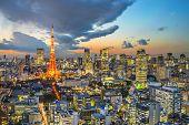 picture of minato  - Tokyo Tower in Tokyo - JPG