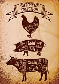 picture of brisket  - vector diagram cut carcasses of chicken pig cow - JPG