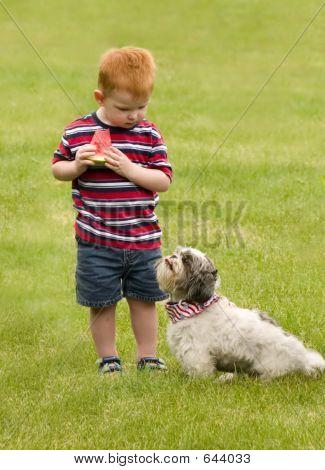 No No Doggie!