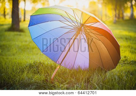 Rainbow umbrella on green grass background