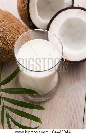 Coconut Fruit With Coco Milk