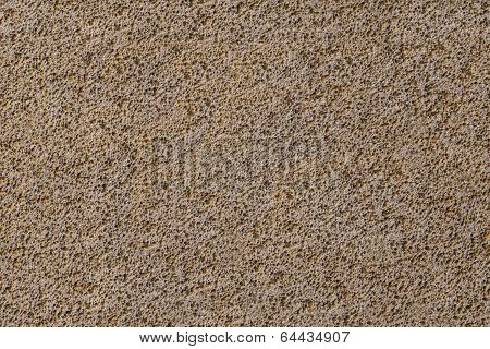 Porouse Scrub Texture Seamless Background, Foam Stone Limestone Or Volcanic Pumice