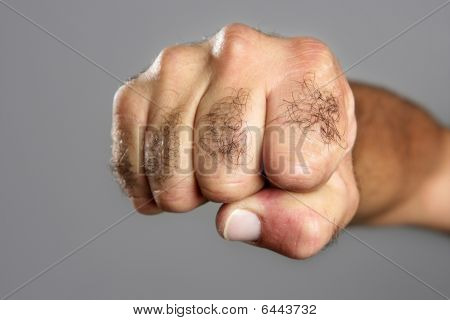 Hairy Man Fist Closeup Expression Over Gray