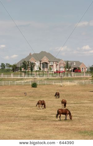 Grand Rural Estate With Horses 2