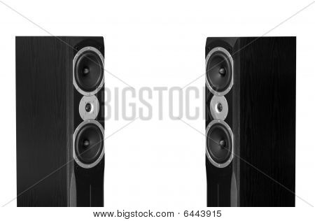 Audiophile Speakers
