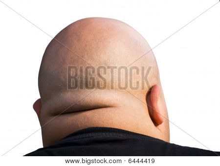 Bald Head Isolated
