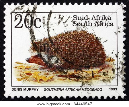 Postage Stamp South Africa 1993 Southern African Hedgehog, Anima
