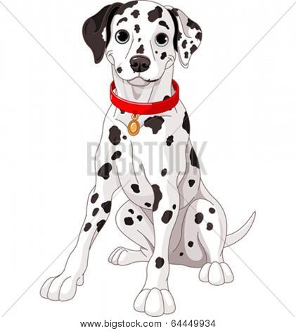Illustration of a cute Dalmatian dog wearing a red collar