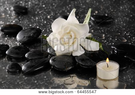 gardenia and candle on pebbles �¢�?�?wet background
